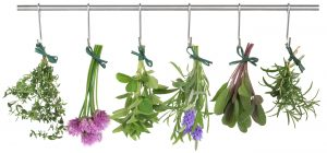 9b) Create your own healing herbal garden a place for healing, gathering, crafting, meditating
