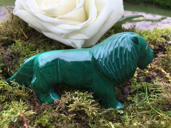 Malachite Lion Totem Power Animal