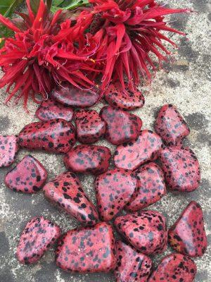 Dalmation Jasper Red