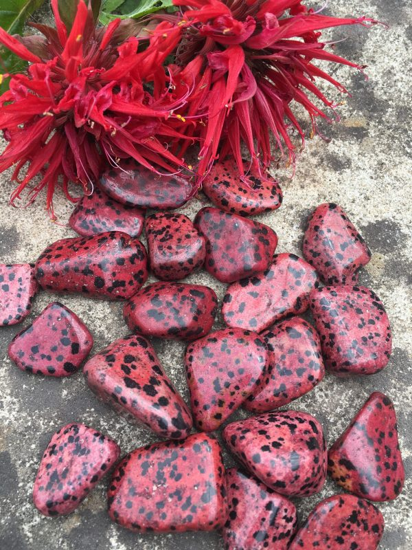 Dalmation Jasper Red Tumblestone