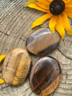 Tigers Eye Worry Stone, Palm Stone + Protective Pouch