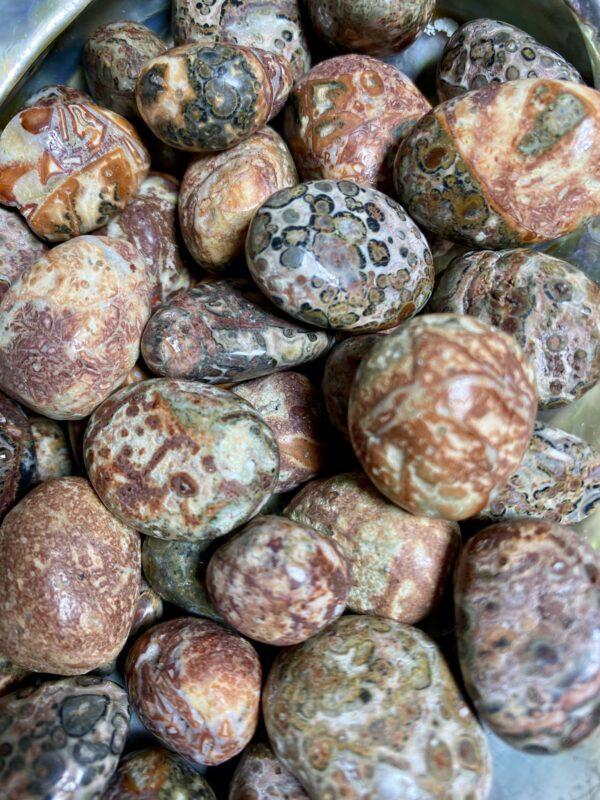 Leopardskin Jasper Tumblestones