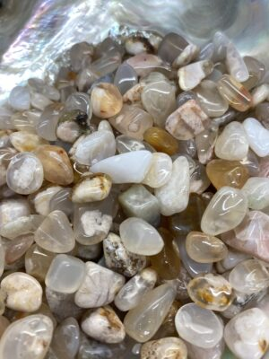 Flower Agate Crystal Chips