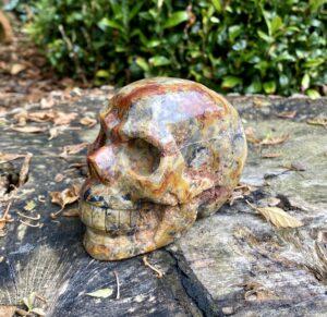 Crazy Lace Skull